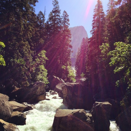 Just 1mi into the John Muir trail in June 2014. There was still 16mi left in the hike at this point, and about 8 of it was up.