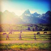 After a hike in the Grand Tetons, July 2013. One of the less common destinations for a National Park visit perhaps, but it remains one of my personal favorites.
